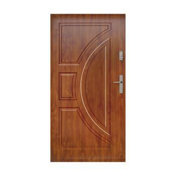 Vchodové dveře Wiked Normal - vzor 10 plné